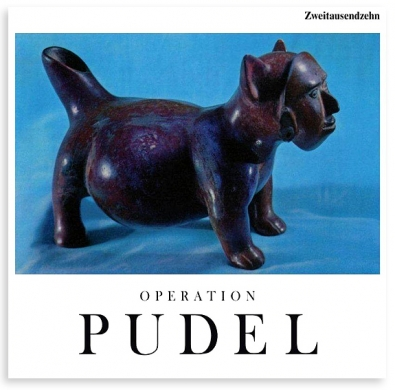 http://thomas-baldischwyler.com/files/gimgs/th-33_Operation_Pudel_2010_k.jpg