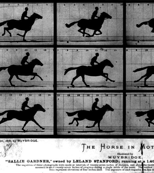 http://thomas-baldischwyler.com/files/gimgs/th-51_TB_WEB_Horses_In_Motion.jpg